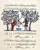Illustration leaf from a dispersed manuscript (Aya Sofya 3703, later Top Kapi Seray 2147) of the Arabic version of De materia medica by Dioscorides (fl. ca. 65 CE) that was copied in 621 AH / 1224 CE in Baghdad.<br/><br/>  Two doctors are preparing medicine. A funnel is set on a tripod over a vessel. The two physicians preparing the medicinal draught stand on either side of the tripod beside two fruit trees. The text is written in Arabic naskhi script in brownish-black and red ink.